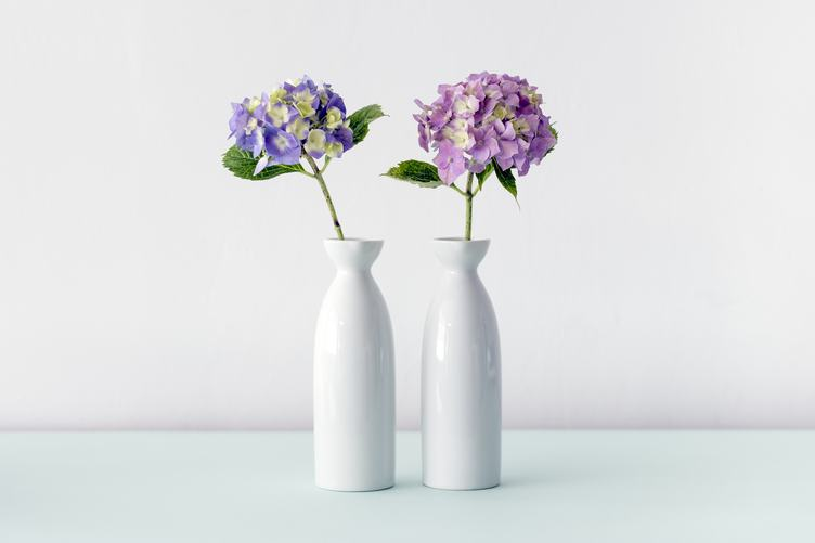 Modern White Still Life with Hortensia