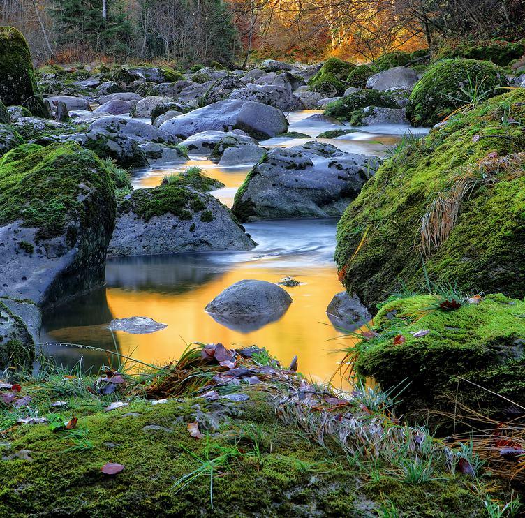 River Flow amongst Stone