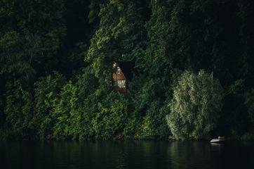 Wooden Hut Hidden in Bushes