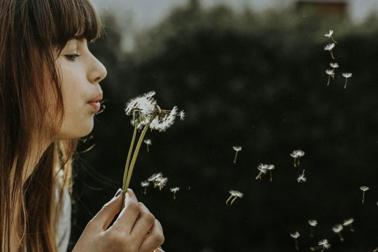Closeup of Young Attractive Woman Blows Dandelions