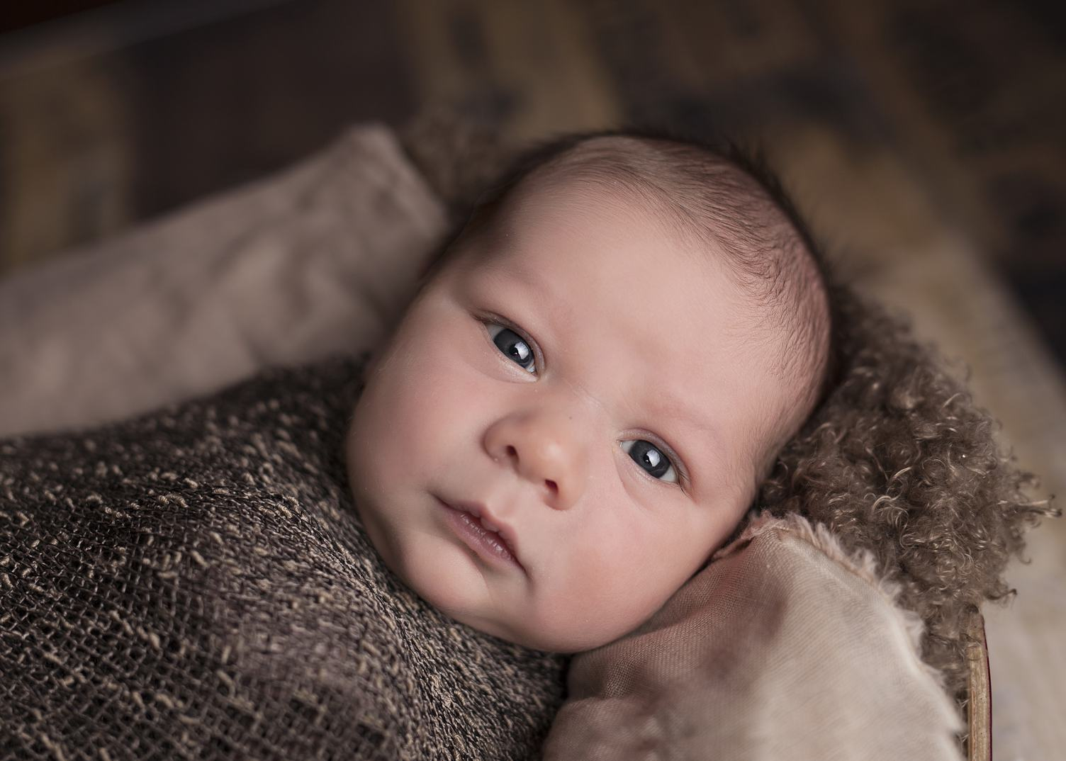 Cute Newborn Baby Wrapped in Brown Knitted Blanket