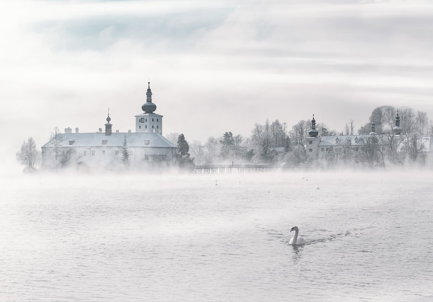 Winter Fog Landscape with Swan, Gmunden Austria