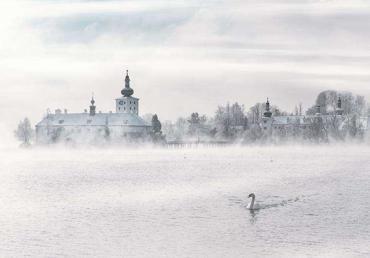 Winter Fog Landscape with Swan, Gmunden Austria