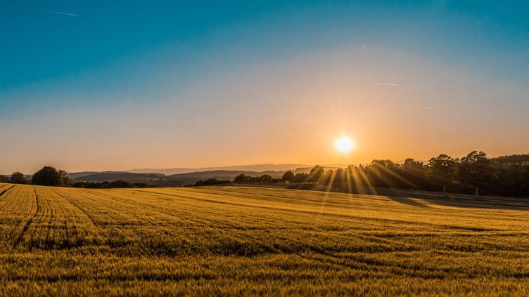 Rural Landscape with Awesome Sunlight