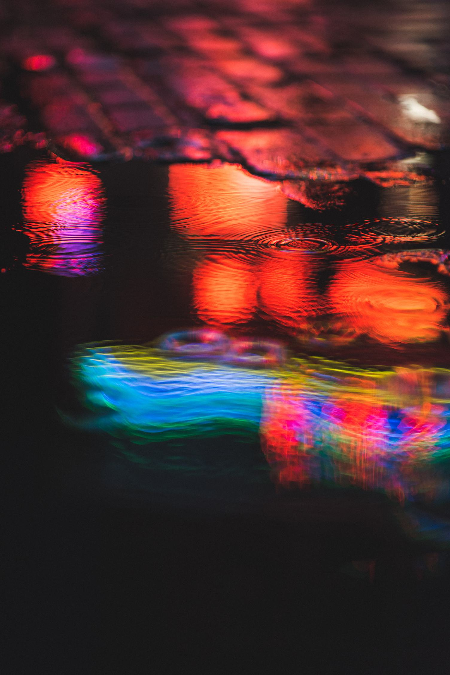 Colorful Lights Bouncing in the Puddle at Night