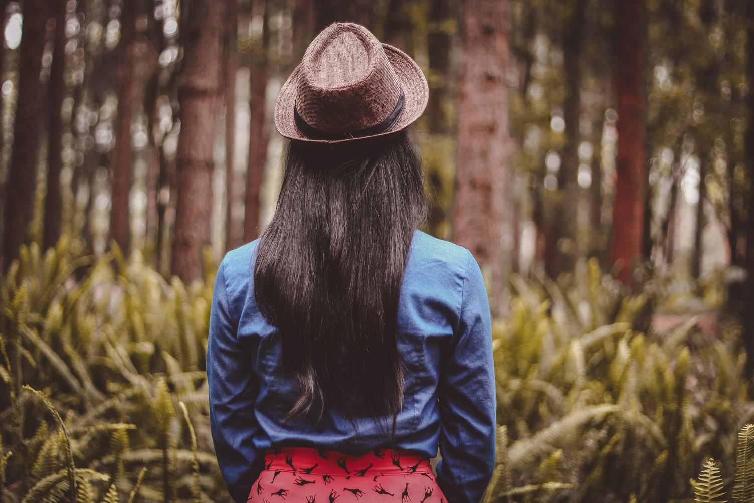 Girl Standing Back and Watching Trees and Ferns in the Forest