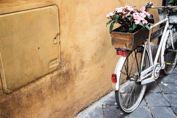 White Vintage Bike with Wooden Box with Pink Begonia Flowers