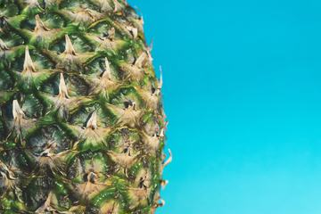 Pineapple Skin Closeup against Blue Wall