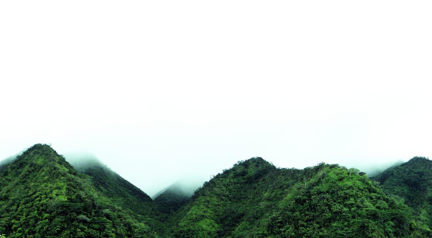 Hills in the Fog, Manoa Valley, Oahu, Hawaii