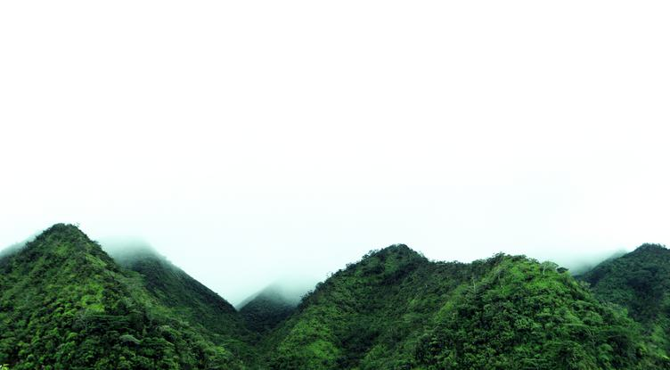 Hills in the Fog, Manoa Valley, Oahu, Hawaii