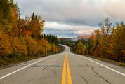 Empty Autumn Mountain Road