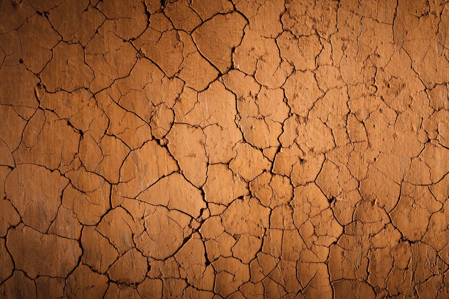 Cracks of the Dried Soil in Arid Season