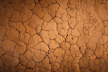 Cracks of the Dried Soil in Arid Season