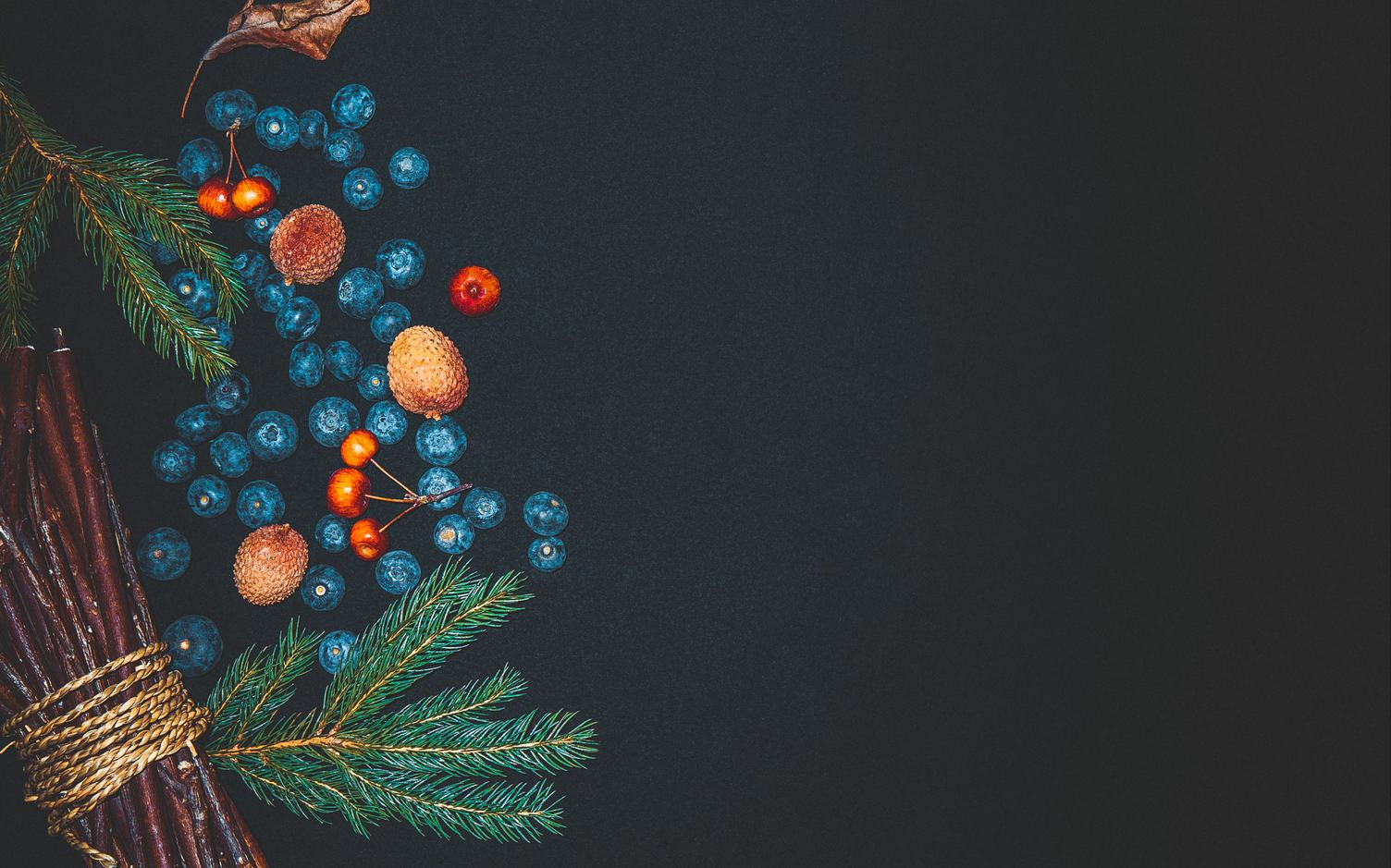 Christmas Composition Branches and Fruits on Black Background