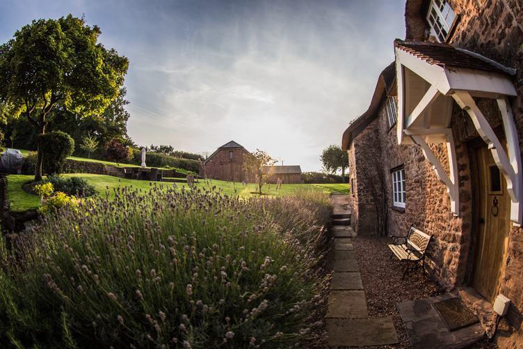 Rural House in the Garden