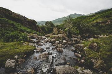 Stream among the Green Hills