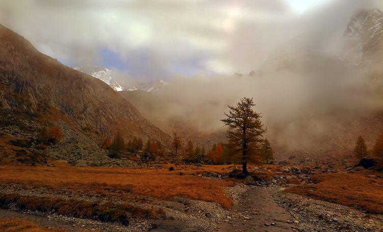 Autumn Mountain Landscape, Val Masino, Italy