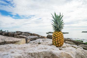 Pineapple on a Rocky Beach