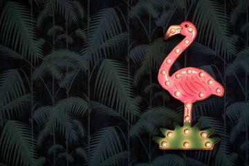 Flamingo Neon