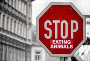Vegan Postulate - Stop Eating Animals