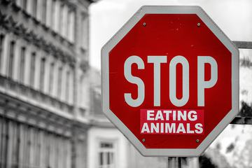 Vegan Postulate - Stop Eating Animals