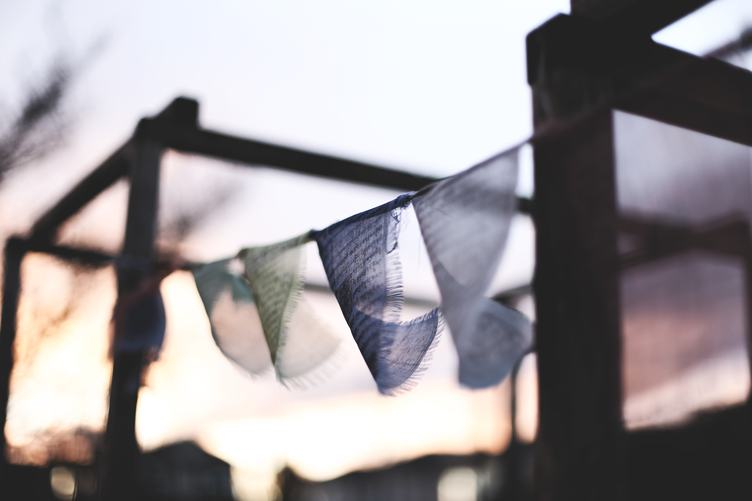 Celebrate Flags hanging Outdoors