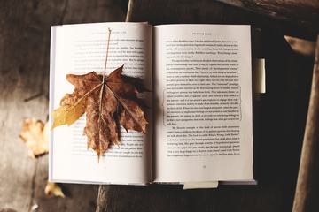 Open Book with Maple Dry Leaf