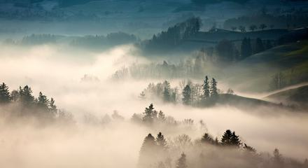 Autumn Misty Countryside Landscape