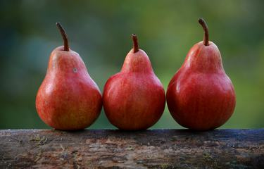Three Ripe Red Pears