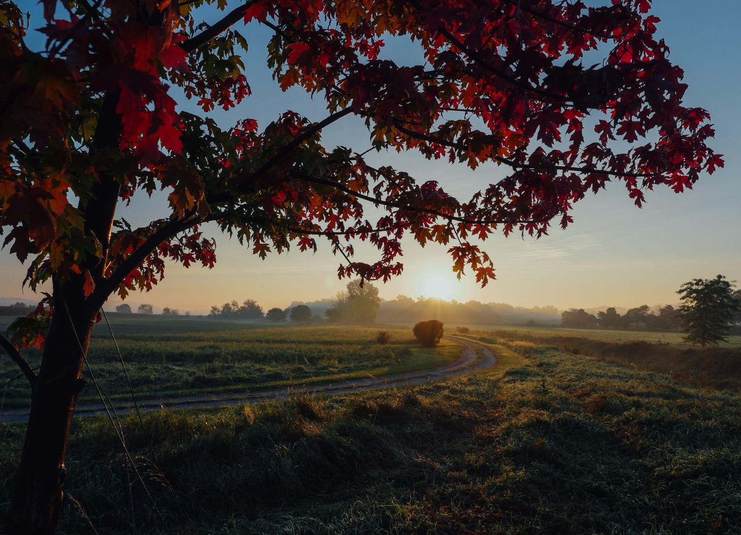 Sunrise on an Empty Rural Road