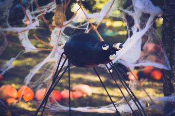 Spider Halloween Holiday Decoration