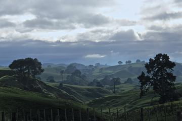 Green Hills, Matamata, New Zealand