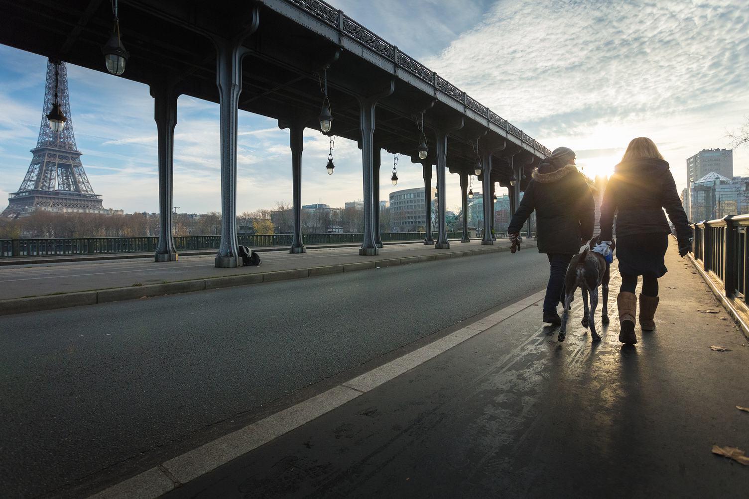 Eiffel Tower and Bir Hakeim Bridge in Paris, Couple Walking with Dog