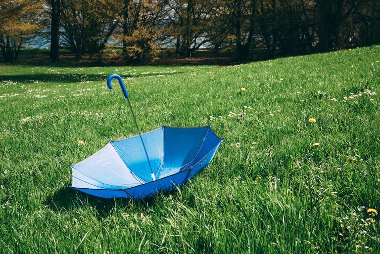 Blue Umbrella on the Grass