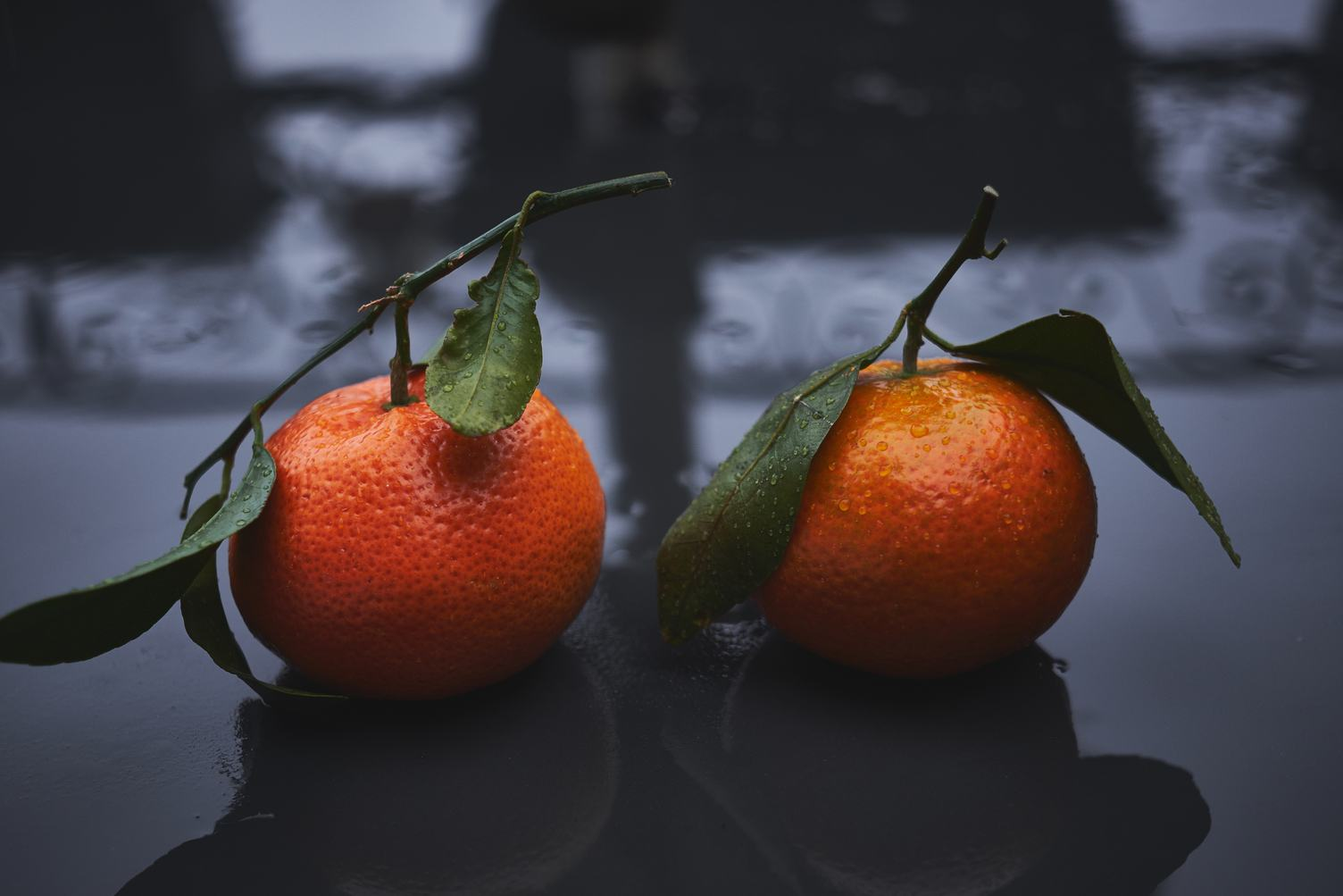 Two Mandarin on Wet Surface