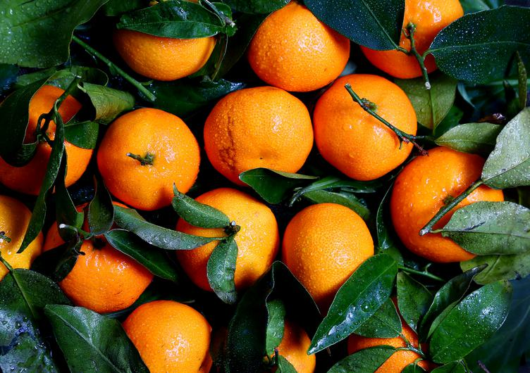 Fresh Tangerines with Leaves Top View