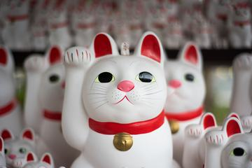 Japan Lucky Cat