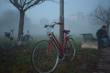 Two Bikes in the Fog