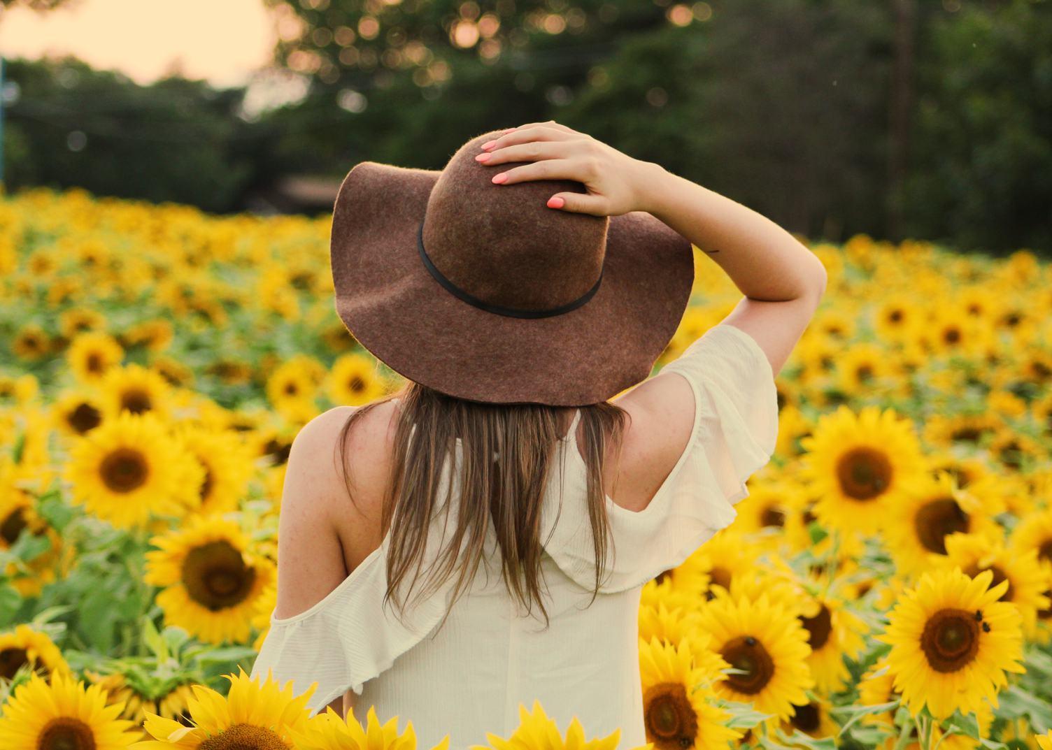 Woman Standing Back in Sunflowers Field