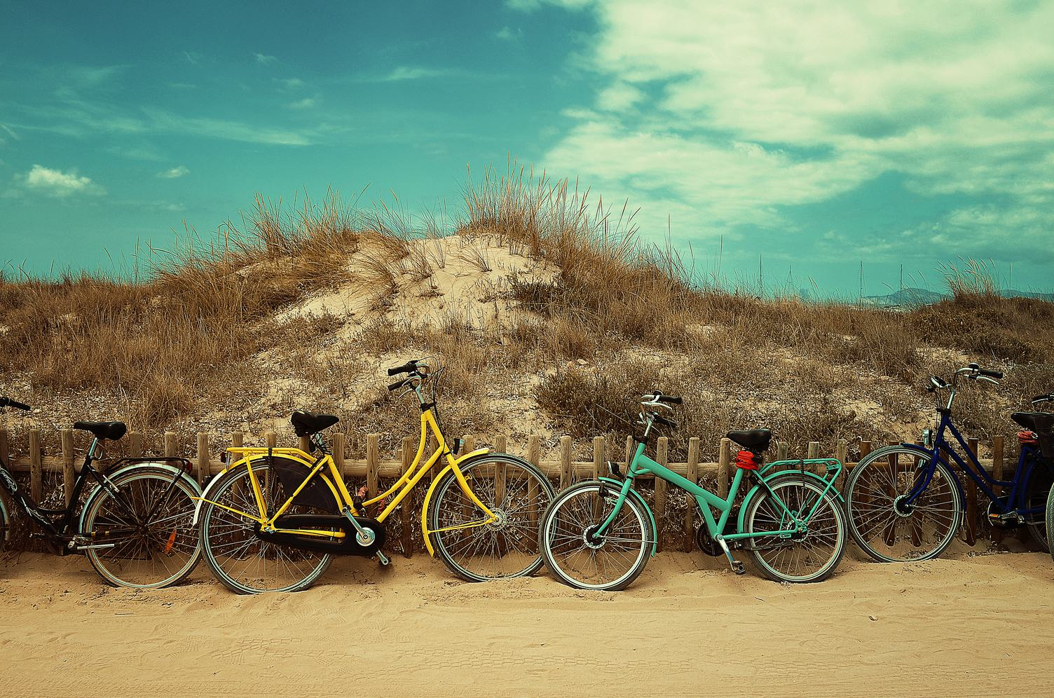 Colorful Vintage Bicycles Leaning against Wooden Fence at Beach