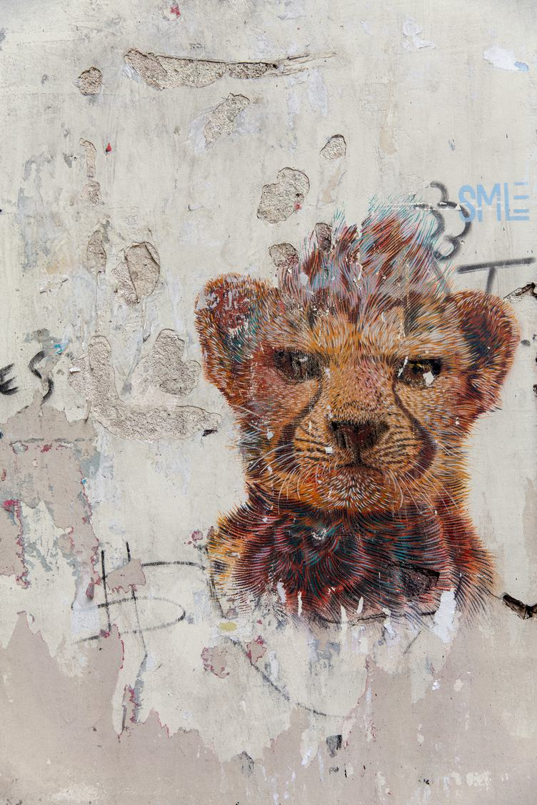 Grunge Wall with Tiger Graffiti