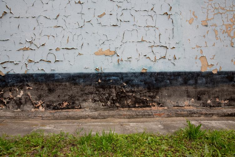 Grunge Wall and Lawn