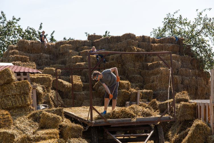 Man Working on Hay