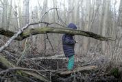 Child in Wild Winter Forest