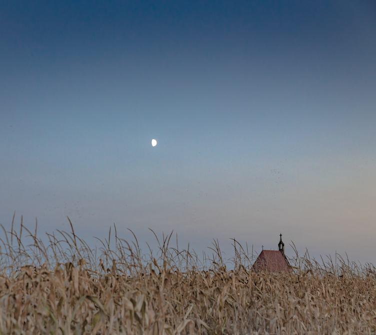 A Little Church in a Cornfield