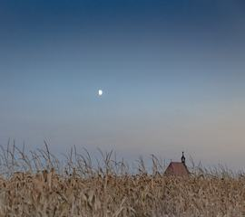 A Little Church in a Cornfield