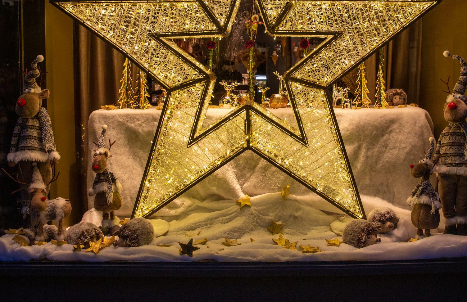 Christmas Shopwindow Reindeer in Sweaters