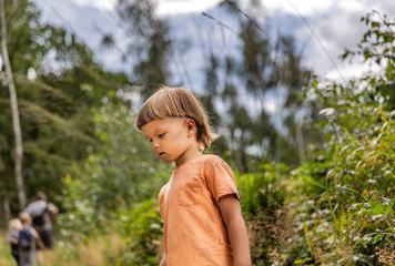 Boy among the Greenery