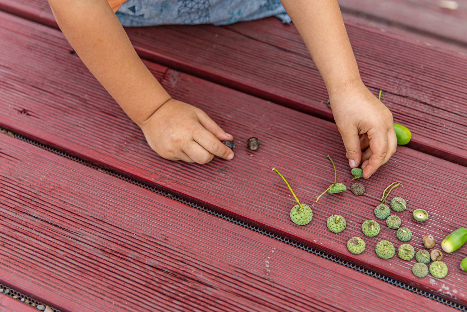 Natural Play with Acorns