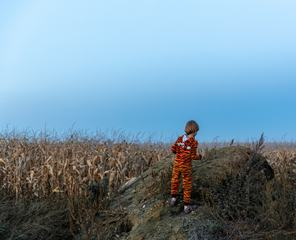 Child Dressed as a Tiger in a Cornfield